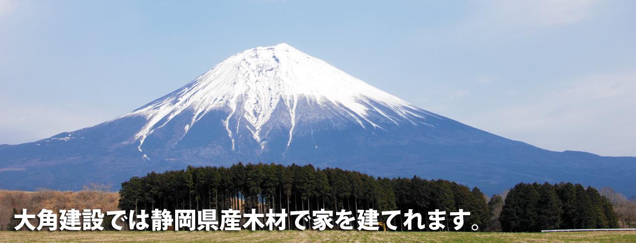 fujisan_mori